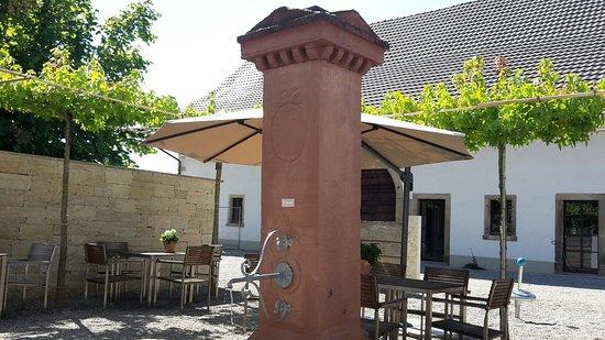 Auggen, Tyskland: 20160827_151835_large.jpg