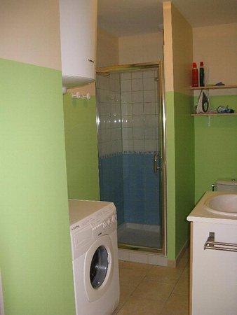 Nailloux, França: Très performante depuis la douche, le cabinet de toilette etc...
