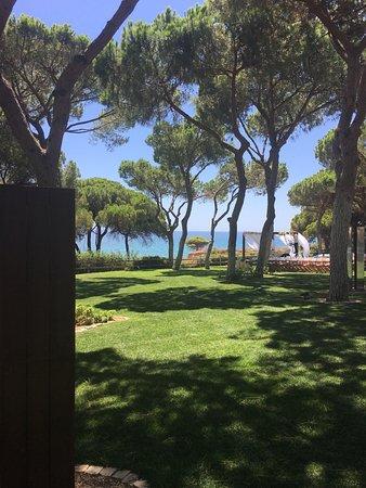 Pine Cliffs Hotel, a Luxury Collection Resort: photo3.jpg