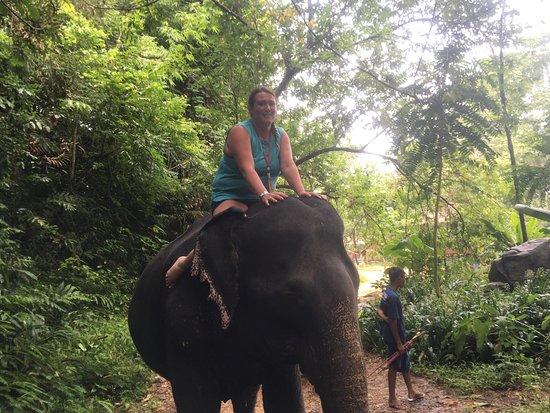 Phangnga, Thailand: Amazing experience with the beautiful elephants 🐘🐘🐘