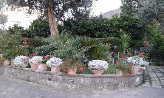 Villa Concetta: giardino