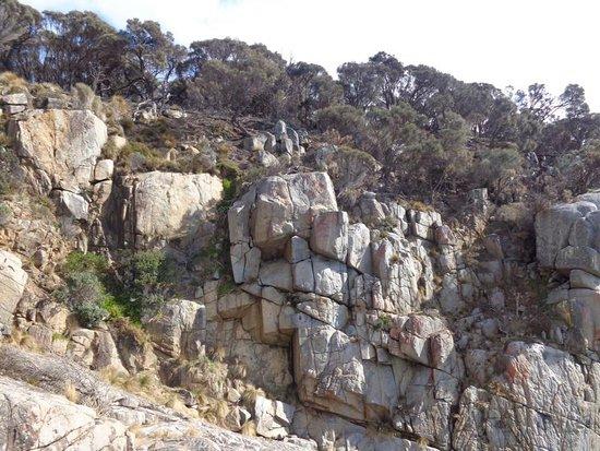 Coles Bay, Austrália: photo9.jpg