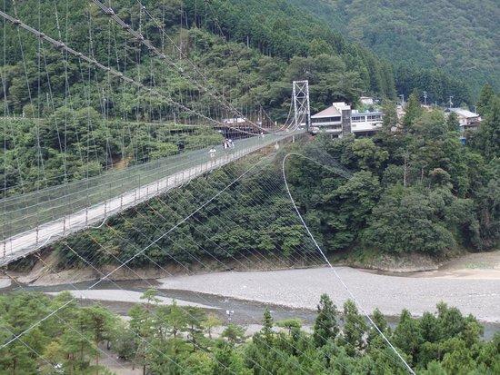 吊橋のほぼ全景