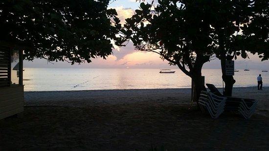 CocoLaPalm Resort: 20160818_183509_large.jpg