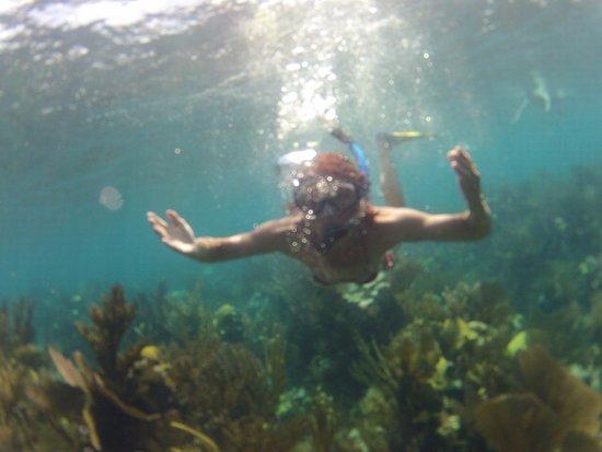 Snorkeling Blue Hole. Beautiful!