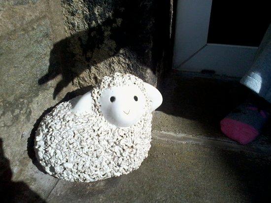 Holmfirth, UK: Cute doorstop at accomodation