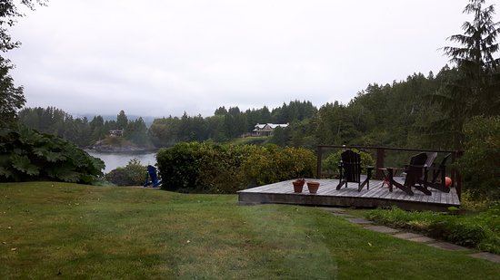 The Tides Inn on Duffin Cove: Backyard grounds