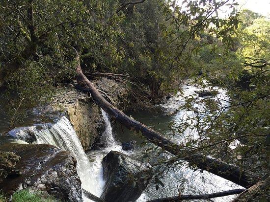 Burnie, Australia: Guide Falls Reserve