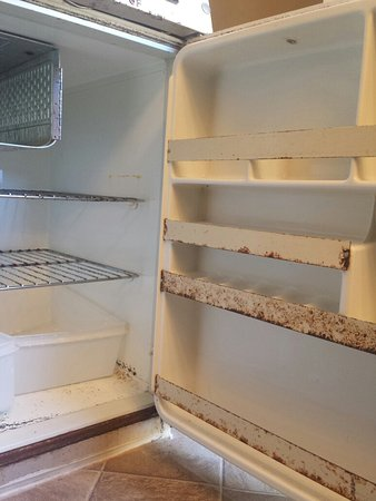 The Captain's Lodge : Refrigerator