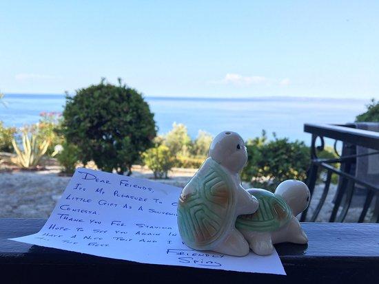 Villa Contessa: Vista spettacolare e personale molto cordiale!