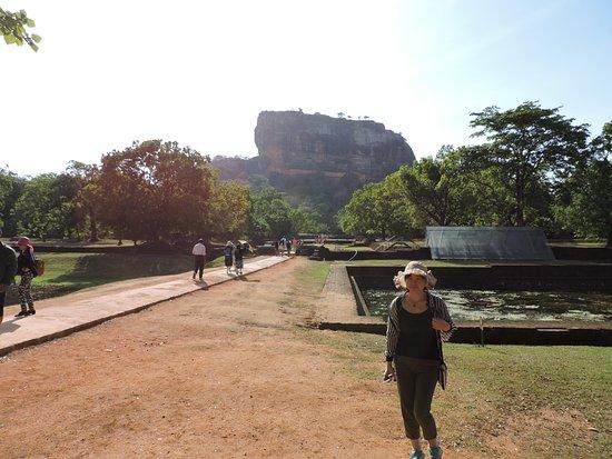 Citadel of Sigiriya - Lion Rock: Rocher vu du parc et bassins