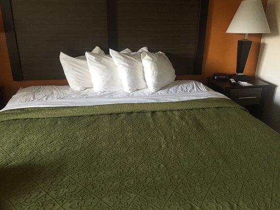 Quality Inn Creekside: photo0.jpg