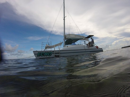 Catamaran Echo: What an amazing adventure!  Captains Jordan and Caleb were awesome as well as first mate Nikki! 