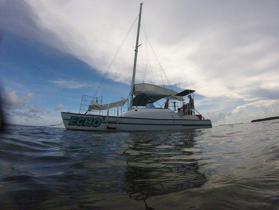 Catamaran Echo: photo1.jpg