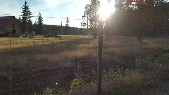 Black Creek, Kanada: Seaview Game Farm