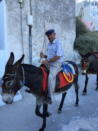 Aigialos Hotel: photo3.jpg