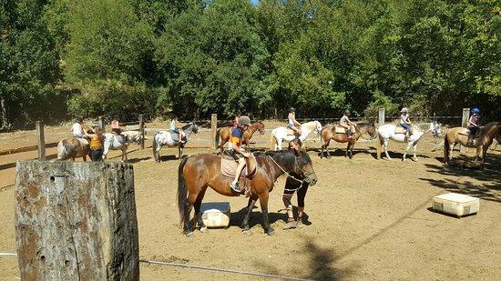 Ferme Equestre chez Valdine