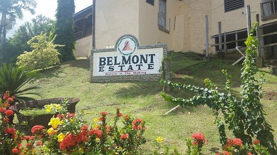 Foto Belmont