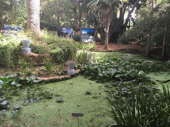 Les Jardins Exotiques de Bouknadel : photo3.jpg