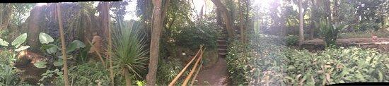 Les Jardins Exotiques de Bouknadel : photo4.jpg