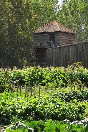 Fort Edmonton Park: Gemüse und Getreidegarten am Fort