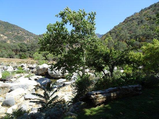 Three Rivers, Californië: photo8.jpg