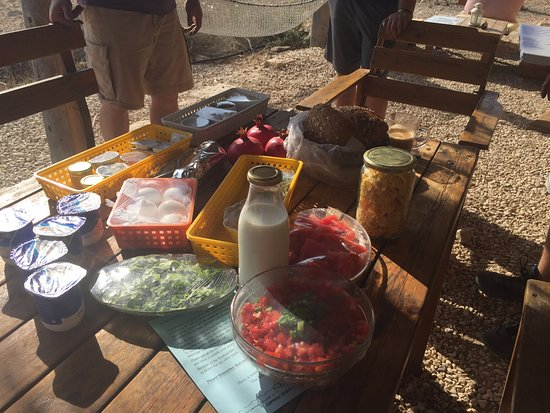 Sde Boker, Israel: A breakfast feast, delivered to our cabin.