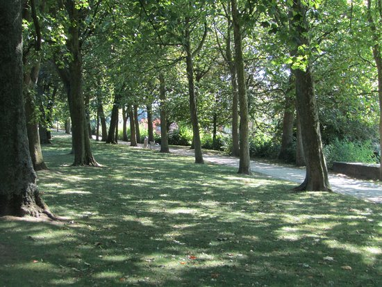 Ieper (Ypres), Bélgica: Tree lined walk/cycle path