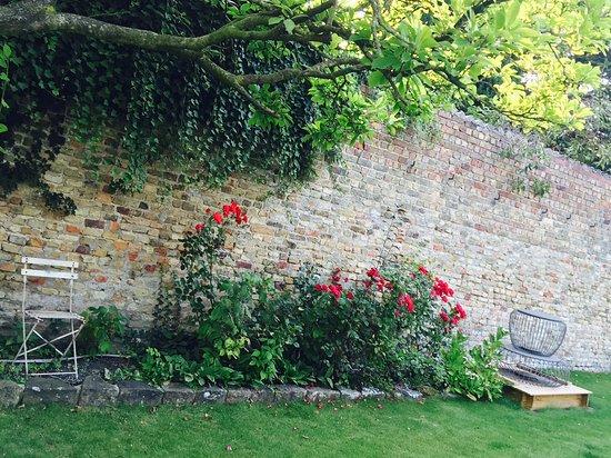 B&B 't Withuis: Jardin privatif entre la réception et les chambres