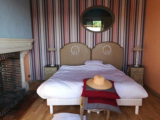 Meung-sur-Loire, Francia: Chambre (dans suite très grande : chambre, salle de bain, salon), couleur, lit et boiseries très