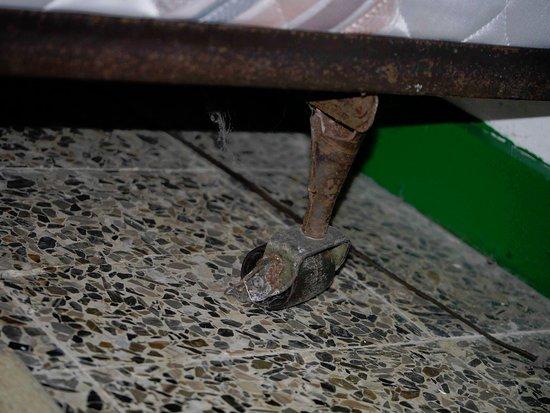 Asa Wright Nature Centre: Bed Leg