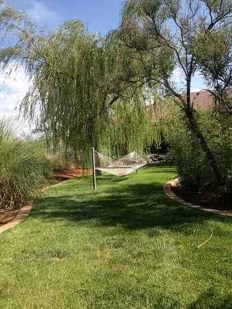 Ivins, UT: Random hammocks around the property.