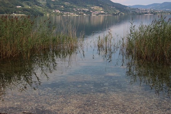Calceranica al Lago, Włochy: il canneto