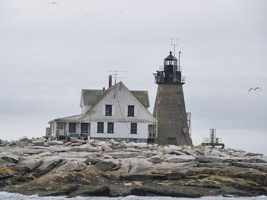 Acadia Fishing Tours: Mount Desert Rock lighthouse