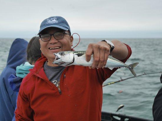 Acadia Fishing Tours: Pollock