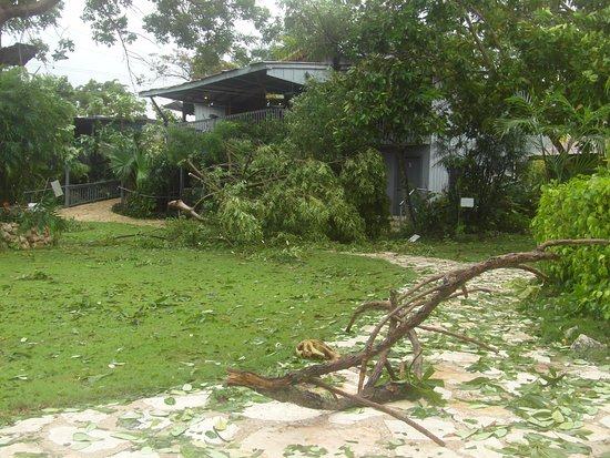 El Remate, Guatemala: Before the Hurricane Clear-Up