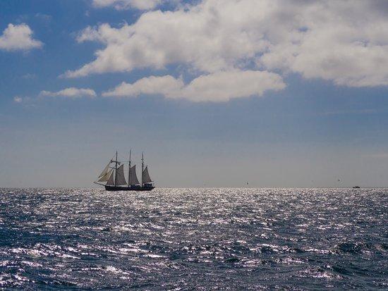 Segelschiffe auf dem meer  Segelschiff auf offenem Meer - Bild von Whale Watch West Cork ...
