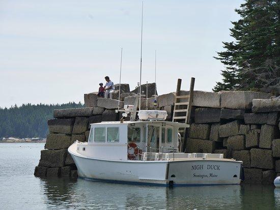 Stonington, ME: Tour Boat