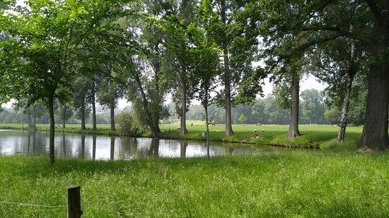 Geilenkirchen, Tyskland: En plena naturaleza este negocio familiar ofrece productos naturales y de la tierra. Tiene parqu