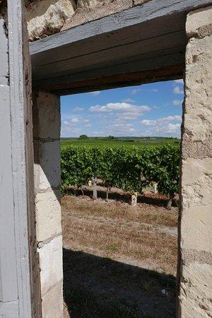 Restigne, Francia: photo3.jpg
