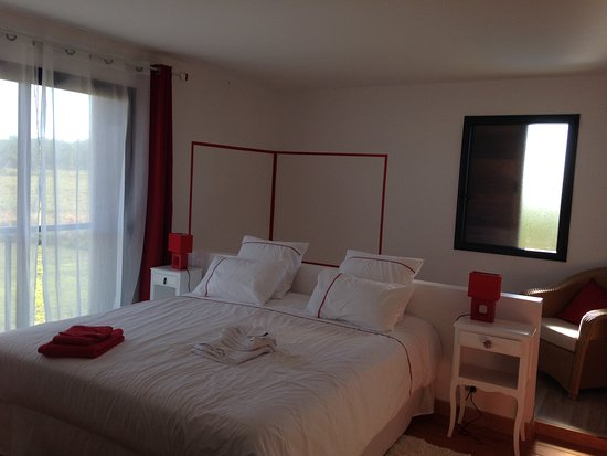 Onesse-et-Laharie, France: The 'red room' or Le Romantique, a jacuzzi behind the bed