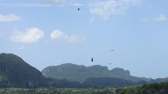 The best view in Viñales