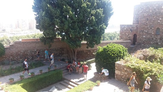 Alcazaba (fort) : Buena visita
