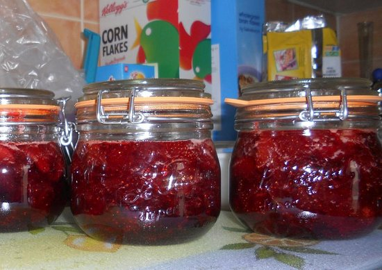 Quillan, France: Strawberry jam made from local produce