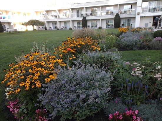 Zdjęcie Best Western Plus Kelowna Hotel & Suites