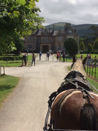 Muckross House, Gardens & Traditional Farms: On Board