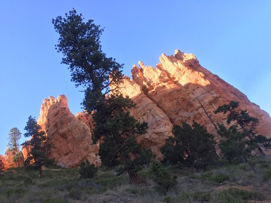Bryce Canyon: photo3.jpg