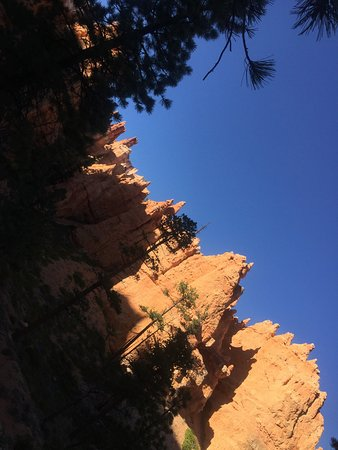 Bryce Canyon: photo4.jpg