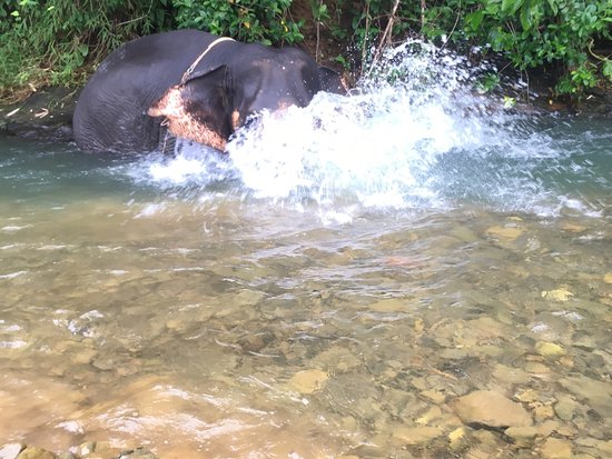 Phang Nga, Tailandia: Amazing memories