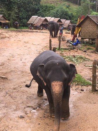 Phang Nga, Thailand: Amazing memories